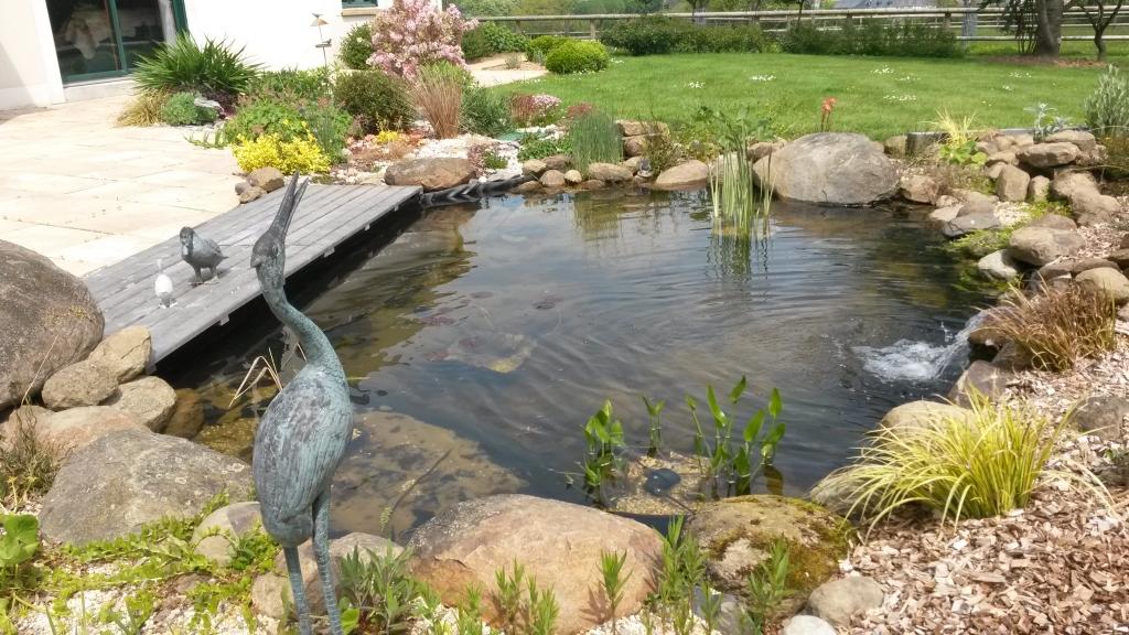 Am nagement de bassins laval en mayenne 53 patrick lefranc - Amenagement bassin de jardin ...